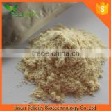 Wholesale Whey Protein Isolate