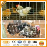 China professional cheap 1/4 inch galvanized chicken wire mesh/cage wire mesh/fence mesh chicken wire mesh