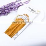 New12 Pcs Mixed Size Nylon Hair Wooden Handle Flat Artist Paint Brushes set Oil Painting Brush