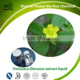< HUATAI>20 years experience for cosmetics raw materials portulaca oleracea extract liquid