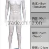 Factory Directly Full Body Fiberglass Muscle Male Mannequin Display