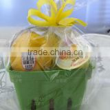 Waterproof Pulp Fruit Container Paper Basket for food packaging
