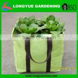 China wholesale cheap handled square poly bag for plants