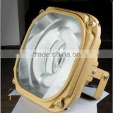Explosion proof induction flood light
