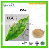 (high quality) (high quality) green tea extract Polyphenols 95~98% EGCG 40%~98% by Polyphenols