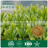 Best Quality Organic Green Tea Extract/Camellia sinensis O. Ktze.