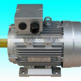 YY7114 single phase permanent split capacitor asynchronous AC motor