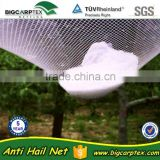 hot sales, Agriculture anti hail net , hail guard net (20 years' Shanghai factory)
