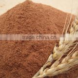 100% Pure Natural High Quality Malt Extract,Malt Barley used for Beer,Food Processing