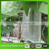 blue PE protective bags for banana cultivation