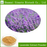 Factory Supply High Quality Natural Lavender Extract Powder