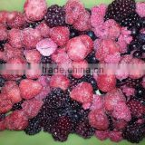 Frozen IQF mixed Berries with BRC kosher certificates