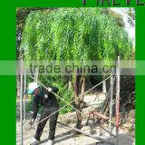 Artificial Weeping Willow tree/high simulation willows