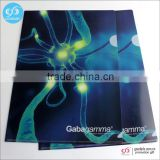 Wholesale custom presentation folder / file folder / plastic file folder