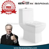 Hot Sale With Free Fitting Competitive Price Bathroom Ceramic Wc Toilet From China
