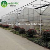 China factory plastic film covering multi span tunnel greenhouse