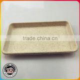 Big Biodegradable Sugar Cane Pulp Rectangle Plate