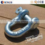 Galvanized Screw Pin US Type Steel Drop Forged D Shackle                                                                         Quality Choice