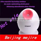 Home use mini deep cleaning/whitening facial steamer beauty machine