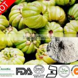 Food grade Garcinia Cambogia Extract - Hydroxycitric Acid ( HCA) 50-60% for fat lose