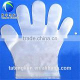 Taian best price high quality plastic glove factory