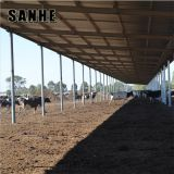 prefabricated metal building, steel structure dairy cattl shed