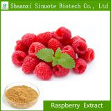 100% Organic Raspberry Extract Powder Raspberry Ketone 98%