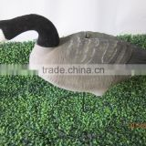 Plastic hunting canada full body goose decoy ,with 3 pcs of removable heads ,feeding &sentry & rest.