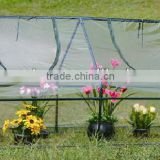 2 windows Clear PVC Cover Greenhouse