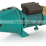 Economic 750w 900w 1000w 1100w 1300w CGPxxx-JF1 with GS EMC CE cast iron Garden Jet Pump