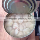 Hot Selling Canned Food Water Chestnuts