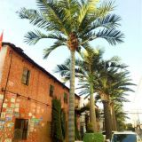 2018 china supplier the newest product artificial tree coconut tree for decoration