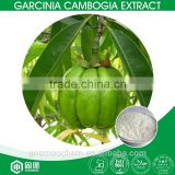 HALAL,KOSHER,ISO factory supply 50%,60% Hydroxycitric acid HCA powder for weight lose garcinia cambogia extract