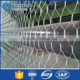Hot-dipped galvanized/electro galvanized poultry wire mesh/hexagonal wire mesh for poultry