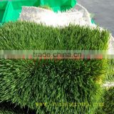 Maize growing system radish seeds sprouting machine/Green Maize Fodder Machine/Green Corn Fodder Machine