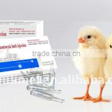 Veterinary Medicine with Heartleaf Houttuynia Herb Injection with Poultry Medicine