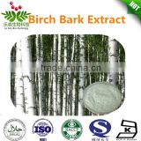 Hot sale Birch bark extract Betulin