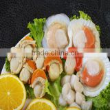 Frozen scallops adductor