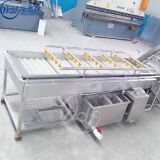 Vegetable celery washing machine fruit apple cleaning equipment