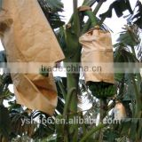 Banana cover paper bag with cheap price
