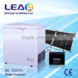 DC 12/24V solar power cold storage room refrigerator freezer direct cooling LEAP
