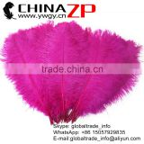 ZPDECOR Trade Assurance Leading Supplier Wholesale Size from 50-55cm Cheap Dyed Firebrick Ostrich Feather Hot Pink