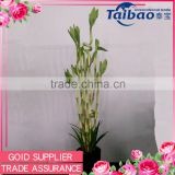 Indoor decorative artificial lucky bamboo plants sale with plastic pot