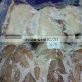 Morocco High Quality Block Frozen Cuttlefish