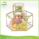 Girls Shadow Wall Display Shelf, honeycomb hexagon jewelry packaging , Toy Storage , acrylic glass custom ring box