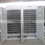 New Condition and Duck,Bird,Chicken,Emu,Goose,Ostrich,Turkey,Reptile use egg incubators hatcher