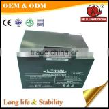 Rechargeable 48v flat cell lithium ion battery 36v 10ah                                                                                                         Supplier's Choice