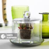 Samyo custome manufacturer clear glass novelty lid container cake dome