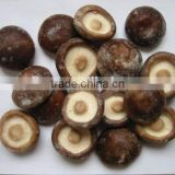 Competitive Price Chinese Frozen Mushroom Wholesale
