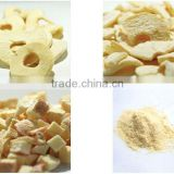 Dried Fruit Chips Dices Powder Frozen Dried Apple